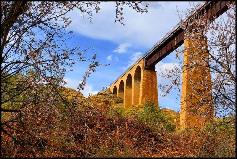 anchuron-puente